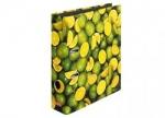 10 x Ordner Limone DIN A4, 8cm bei ZHS kaufen