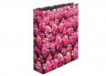 10 x Ordner Drachenfrucht DIN A4, 8cm bei ZHS kaufen