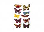 10 x Etiketten Schmetterlinge bei ZHS kaufen