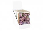 Kartendisplay Frühling bei ZHS kaufen