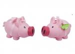 6 x Stück vom Glück Sparschwein bei ZHS kaufen