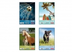 10 x Zeichenblock A3 Tiere